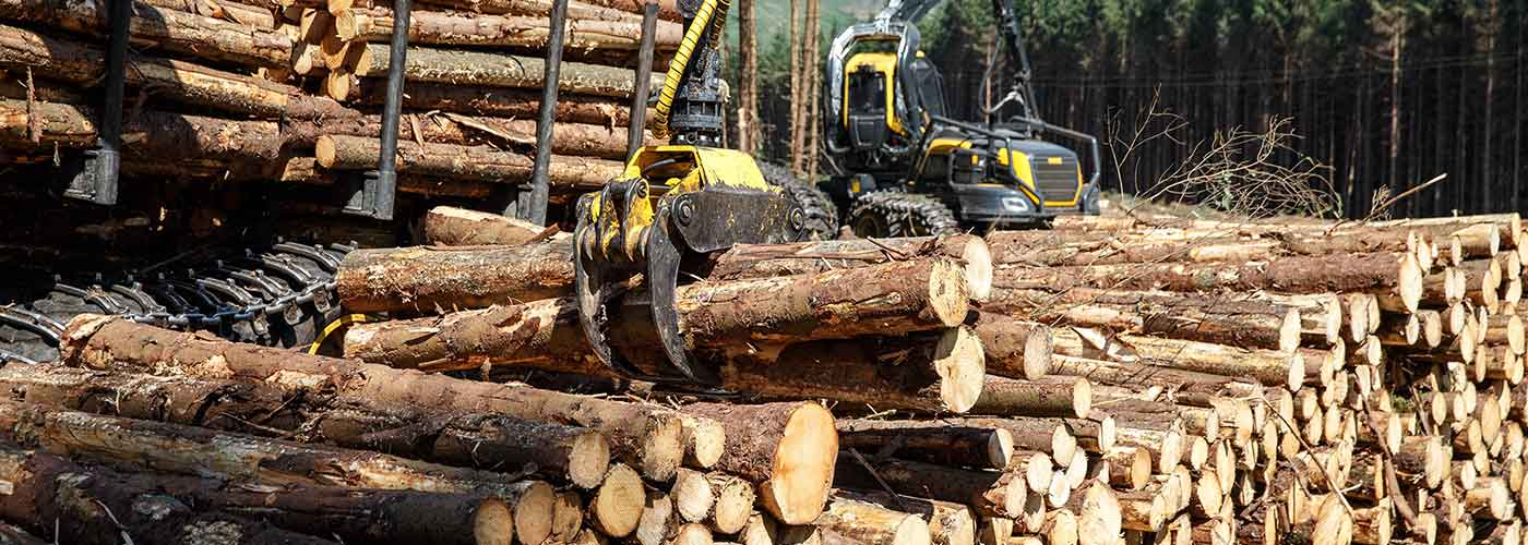 Unloading roundwood bars